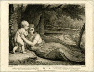 Ιπποθόωντας - Ιπποθοωντίδα φυλή