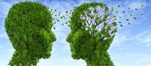Άνοια- Αλτσχάιμερ: Ποια τρία ποτά προστατεύουν από την απώλεια μνήμης;